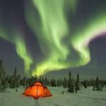 Arctic Ski Safari